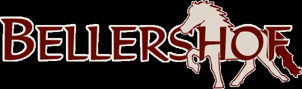 Logo-Bellershof-600x178